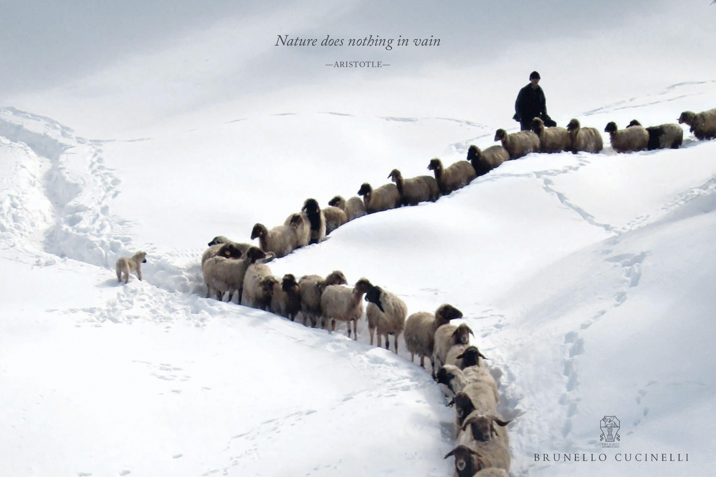 「自然は不必要なものは作らない。」アリストテレス